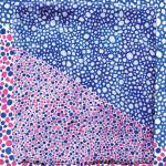 Sara Plantefève-Castryck's Textile Design