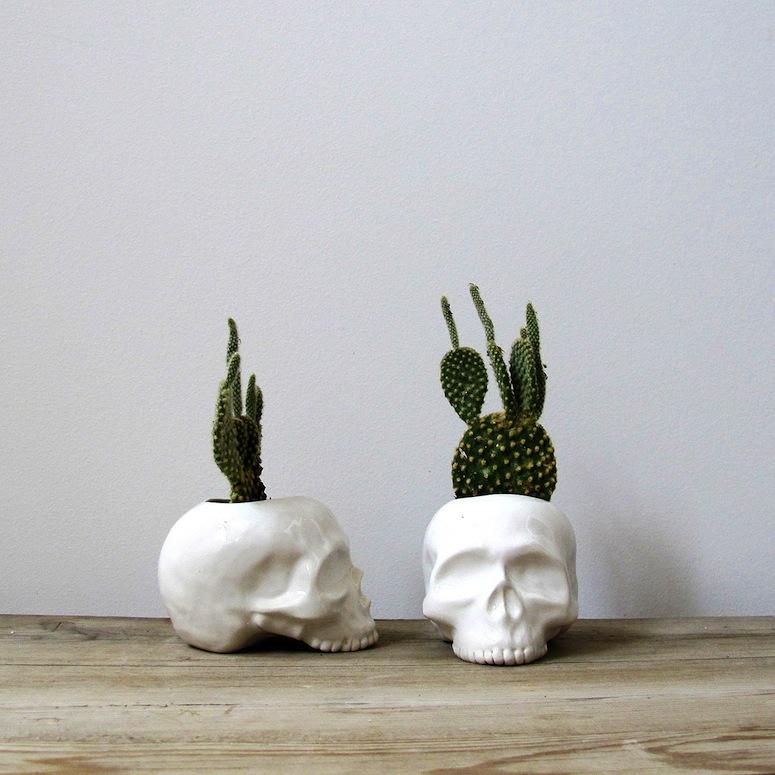 Mudpuppy ceramic skulls