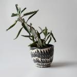 Intricately Patterned Ceramics by Dana Bechert