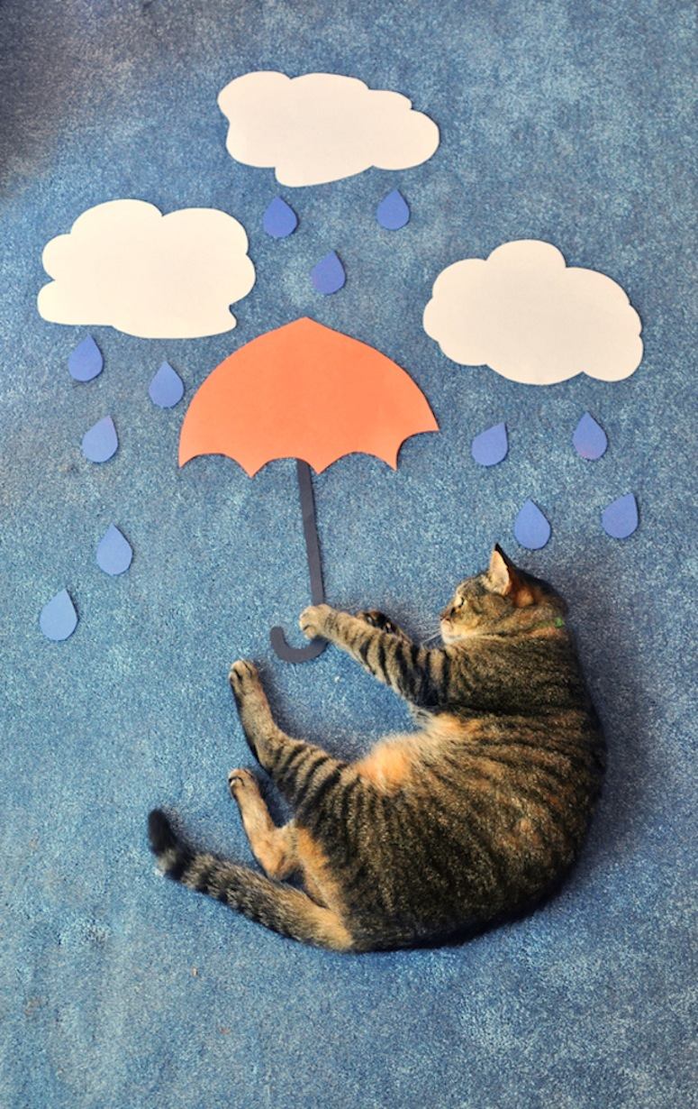 cat_mary_poppins