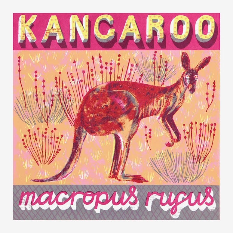 K is for Kangaroo who takes hop, skip and bound.