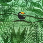 A lonely toucan in a big jungle by elifdemir Lovehellip
