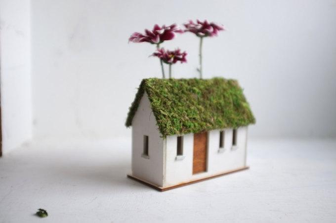 cottage-bud-5