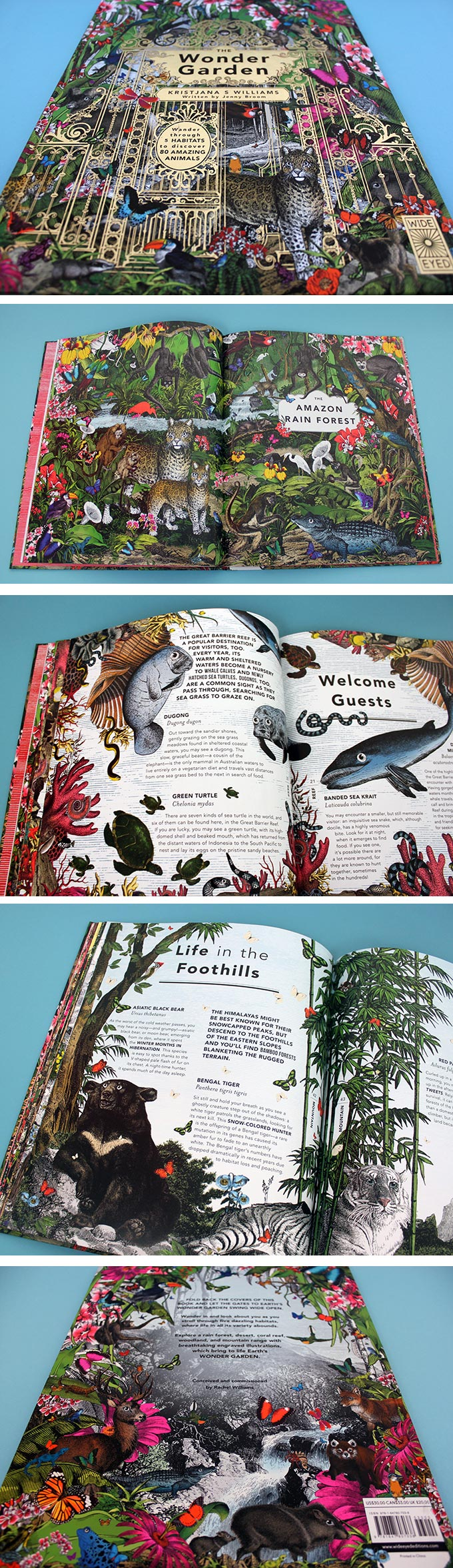 The Wonder Garden by Jenny Broom and illustrated by Kristjana S Williams