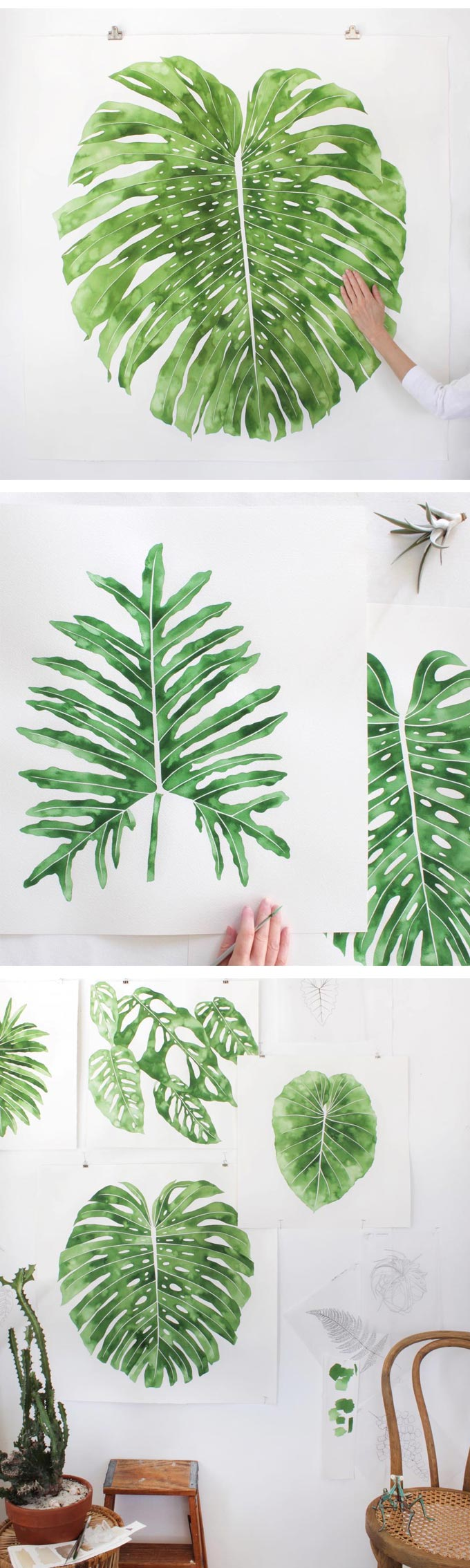 Plant paintings by Living Pattern