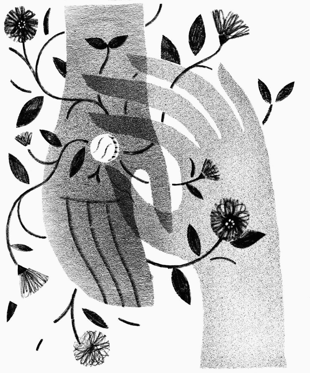 Gray illustration by Julianna Brion