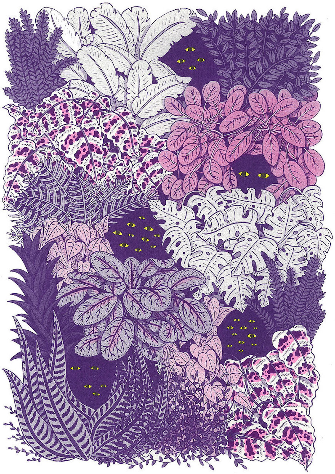Purple illustration by Ashley Ronning