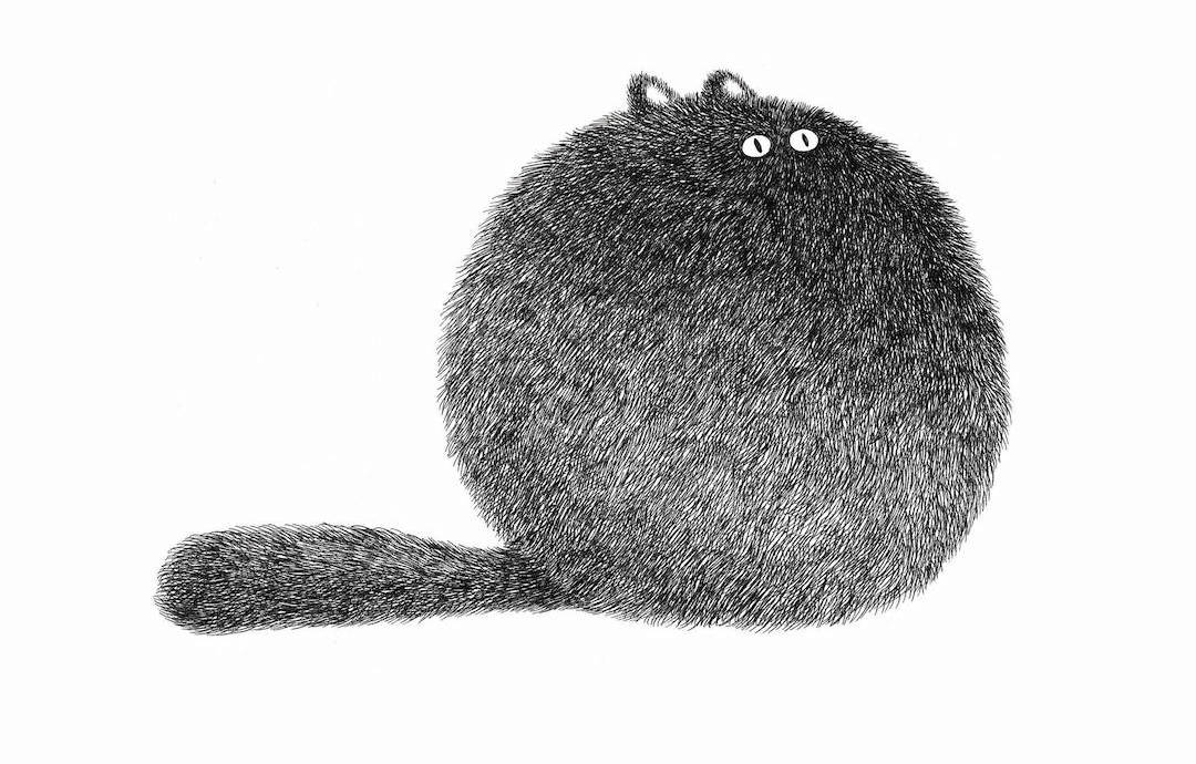 Cat Art Drawings Of Felines Too Fluffy For Their Own Good
