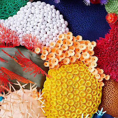 Cut paper sculpture is a colorful way to make a coral reef cut paper relief sculpture is a brilliant way to illustrate the diversity of a coral reef mightylinksfo