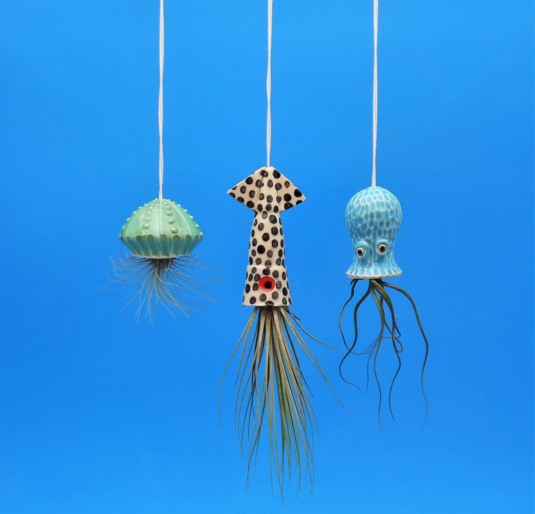 Ceramic air plant holders by Cindy Searles