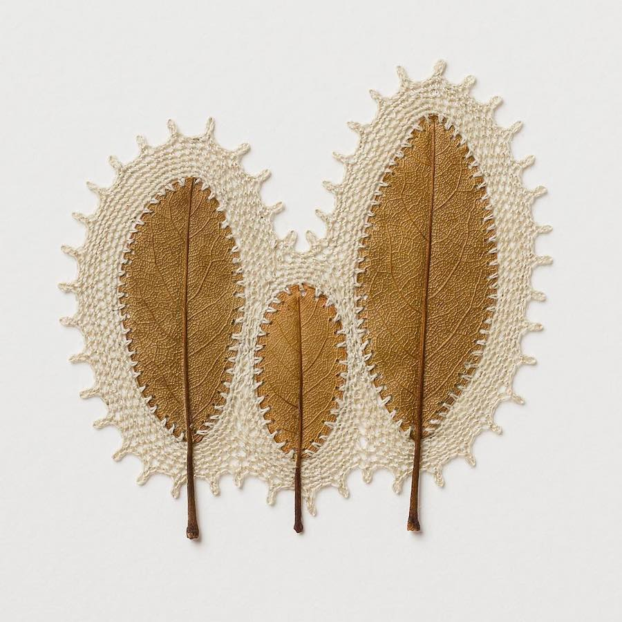 Dried Leaves Find New Life Through the Art of Crochet