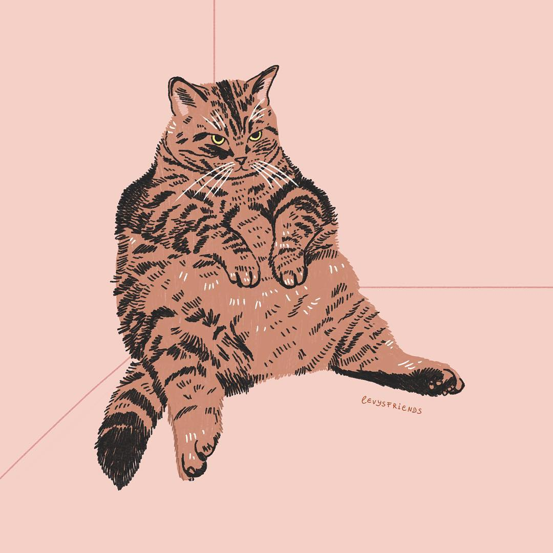 Custom Pet Portraits Of Kitties Capture Their Fluffy And