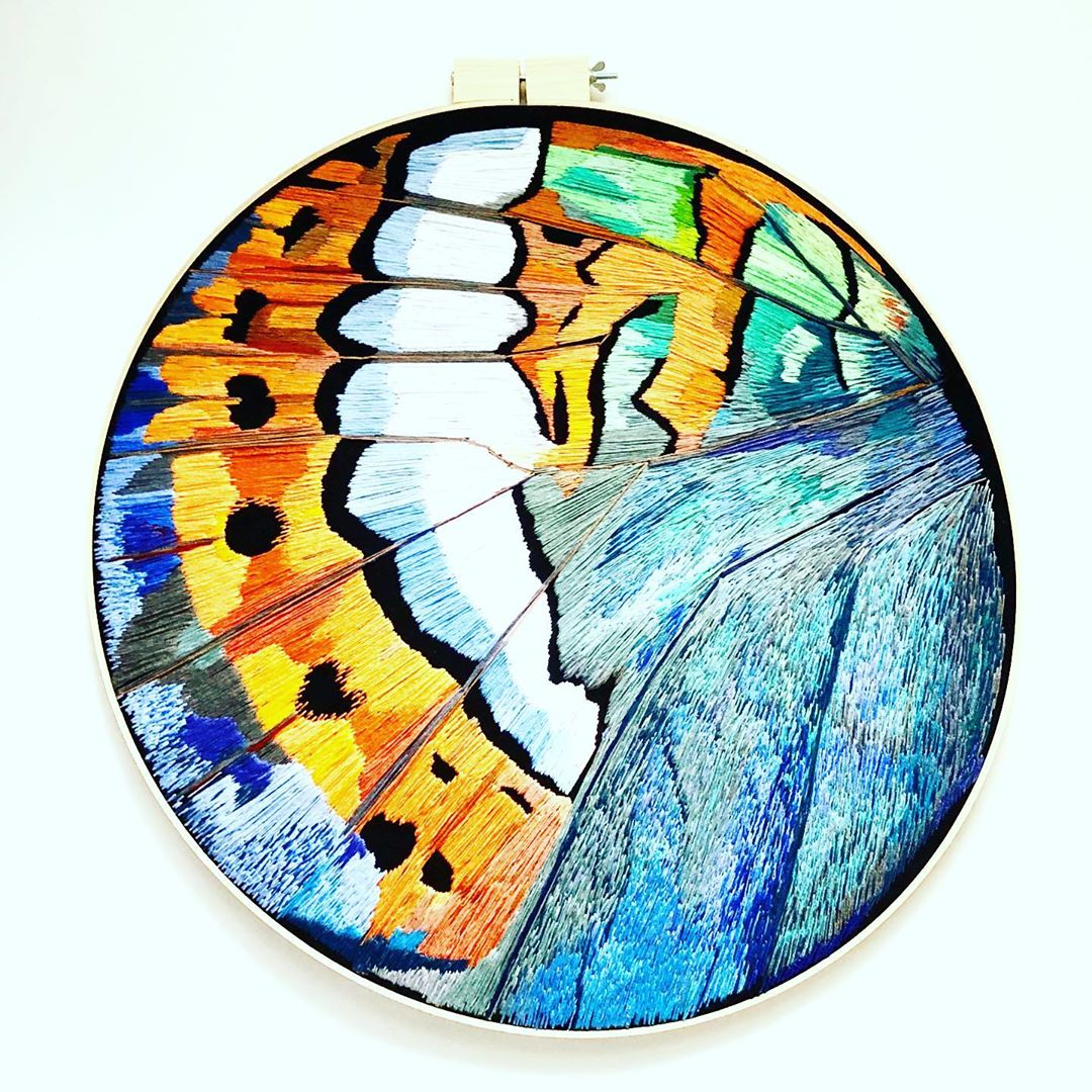 Butterfly wing contemporary hoop art by Rabbit Hat Designs