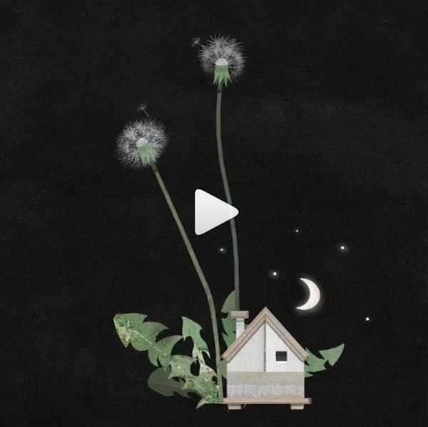 Nancy Liang Animated GIF