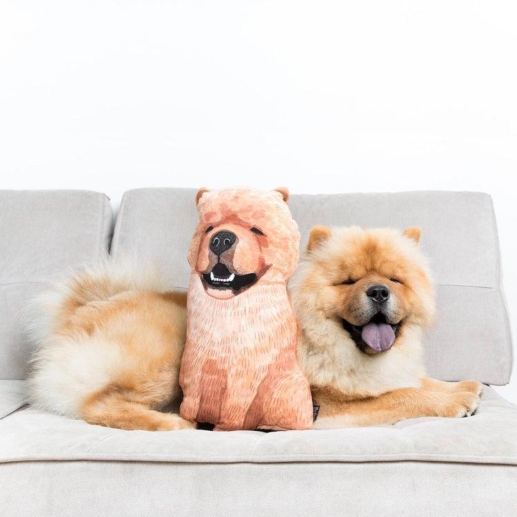 Custom Pet Portrait Pillow