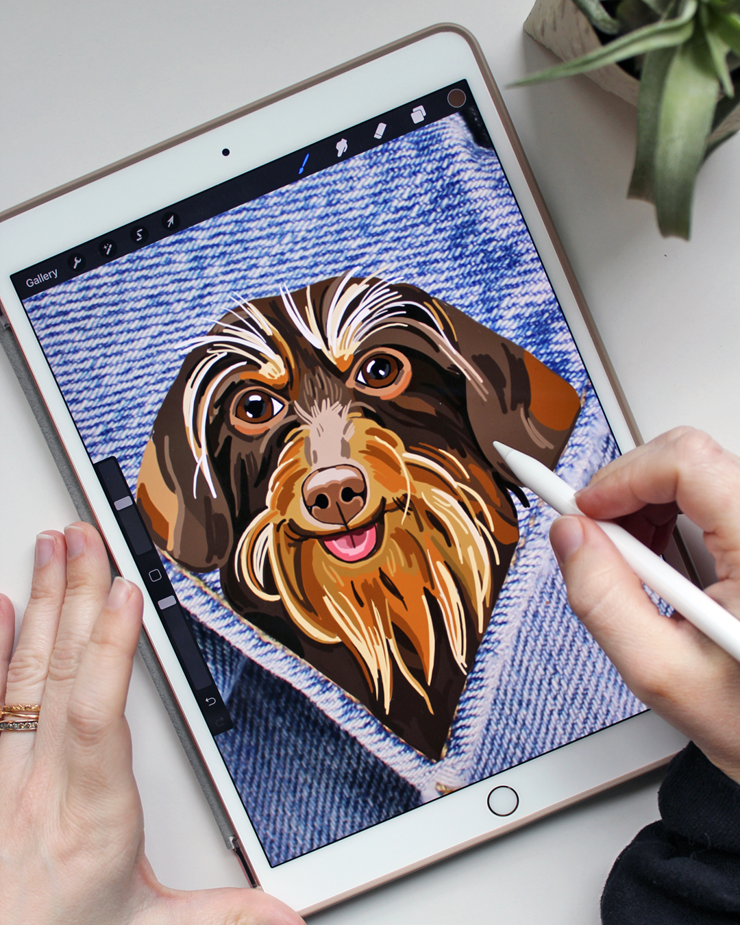 Want to Get an Embroidered Pet Portrait? Here's the First Step [Brown Paper Stitch Dispatch]