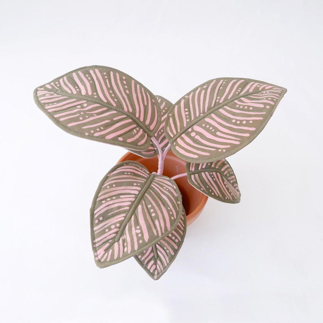 Fabric plant