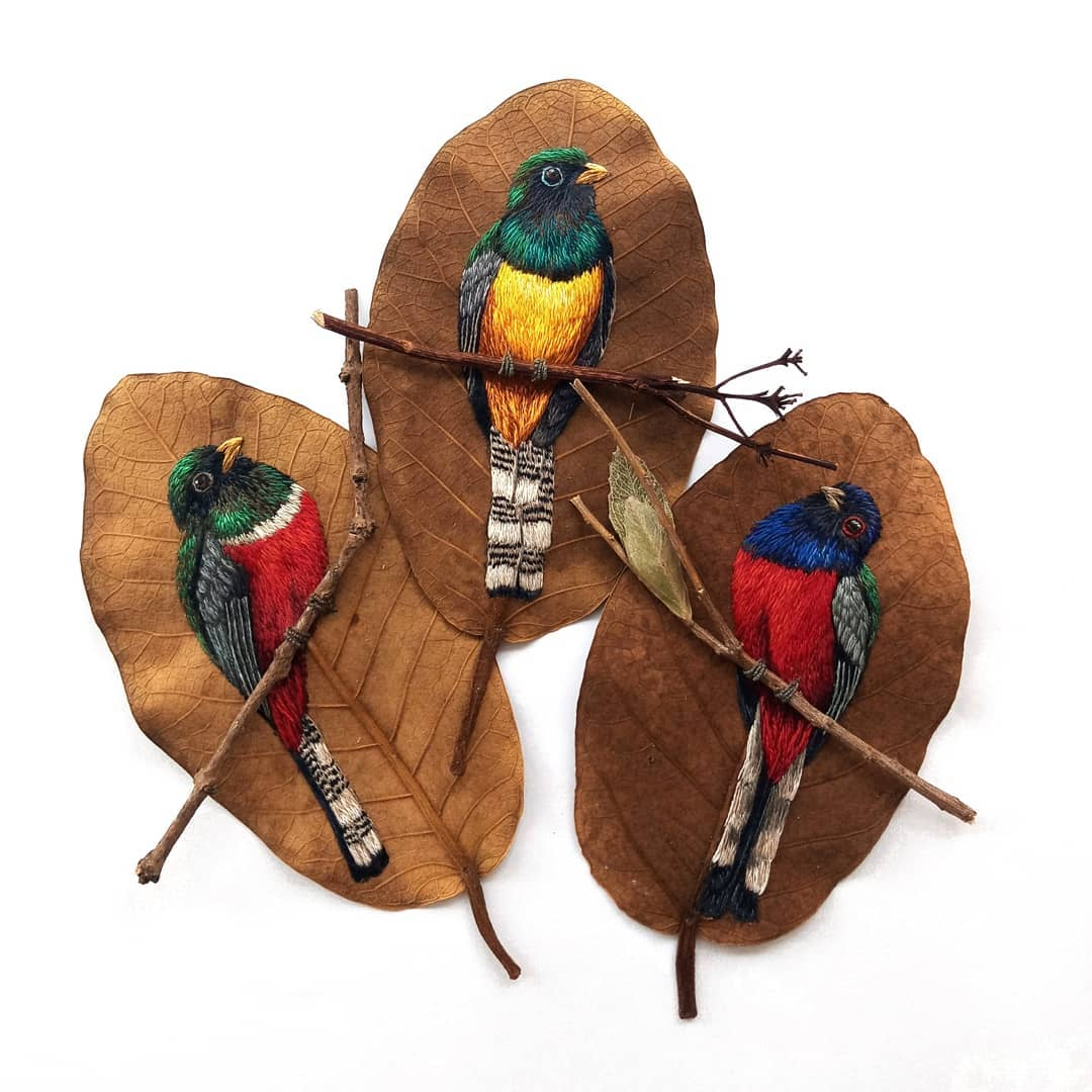 Real Dry Leaves Are an Unconventional Canvas for Colorful Bird Embroideries