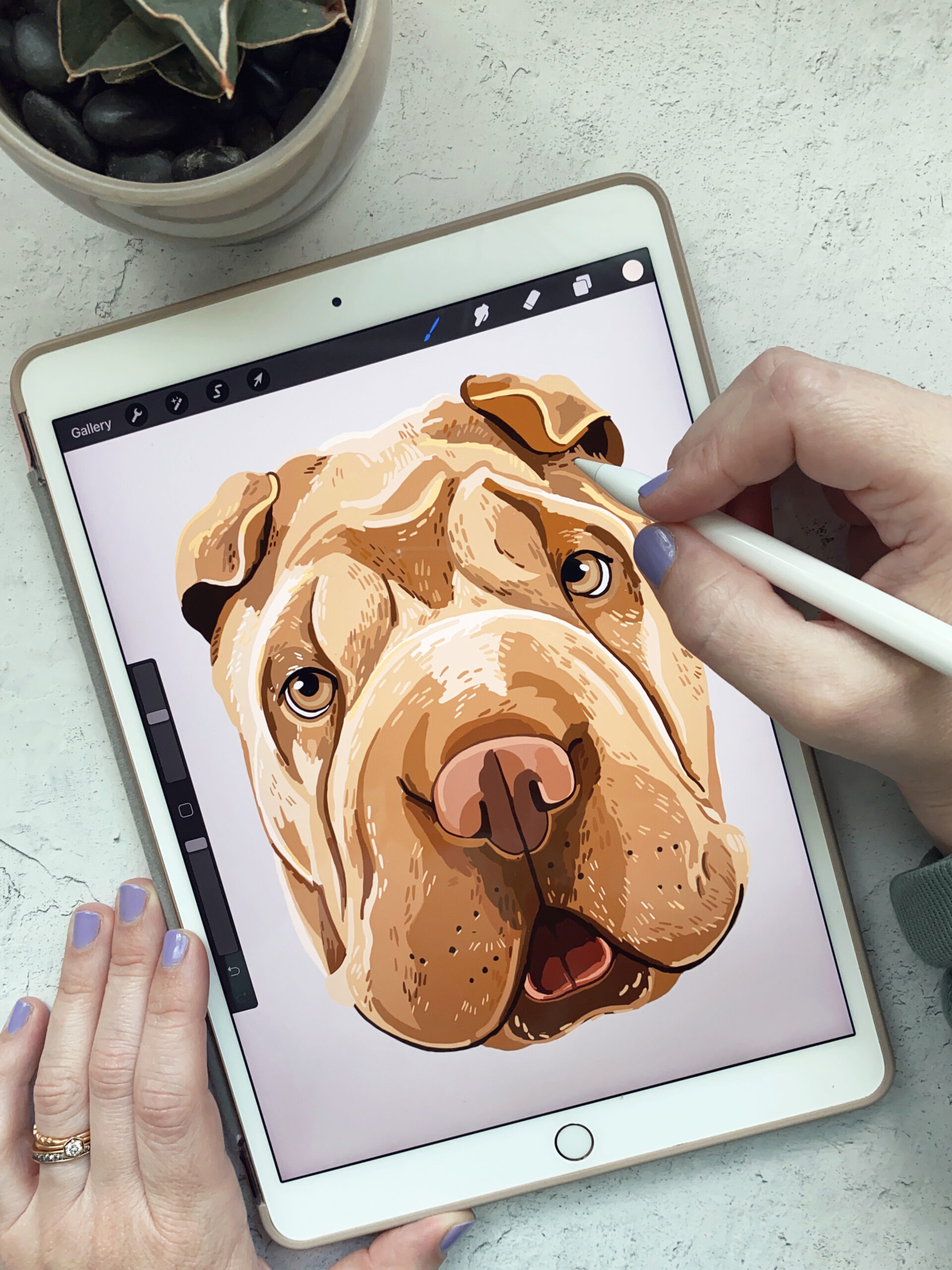 Drawing a Pet Portrait on an iPad Air