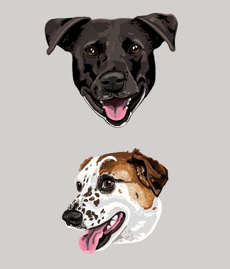 Digital pet portraits of dogs illustrated by Sara Barnes / Brown Paper Stitch