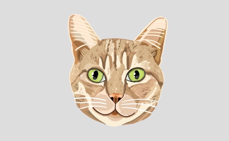 Digital pet portrait of cats illustrated by Sara Barnes / Brown Paper Stitch